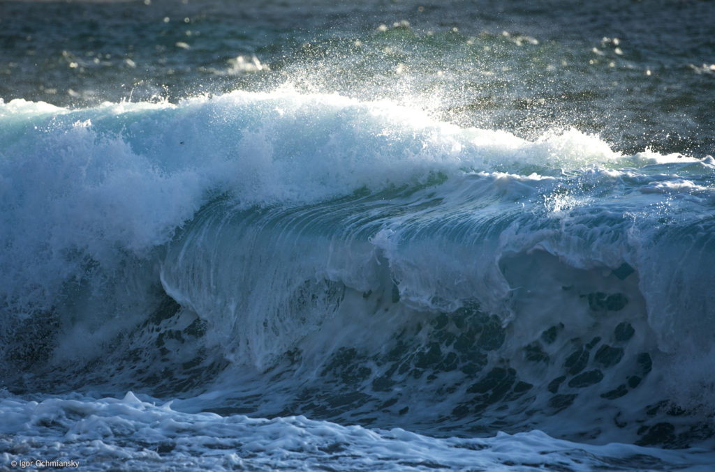 La vague morte